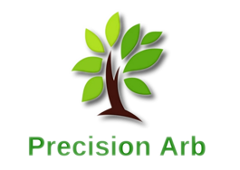 Precision Arborist Adelaide South Australia